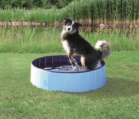 Hundebasseng, Vannsprinkler